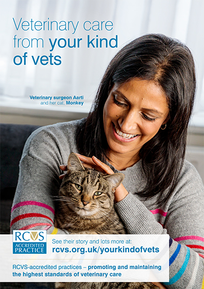 Poster featuring veterinary surgeon Aarti & her cat Monkey