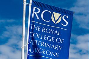 RCVS flag