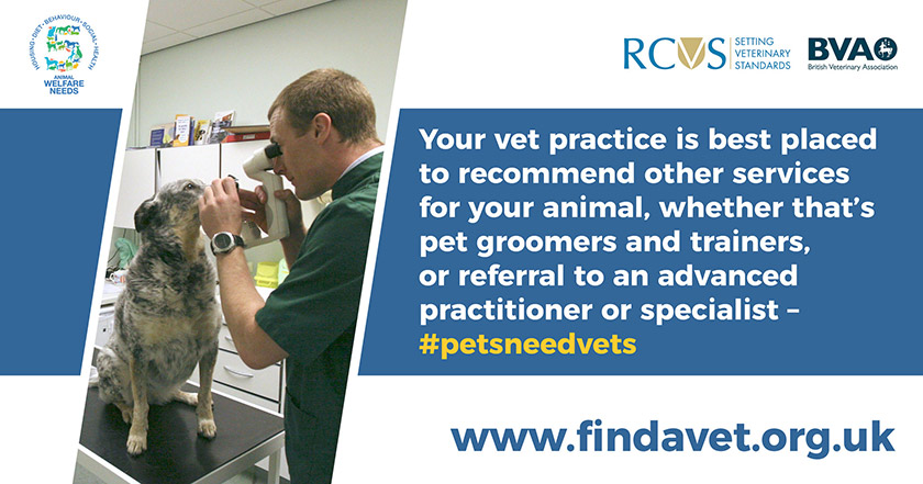 text - Your vet practice is best placed to recommend other services for your animal, whether that's pet groomers and trainers, or referral to an advanced practitioner or specialist.