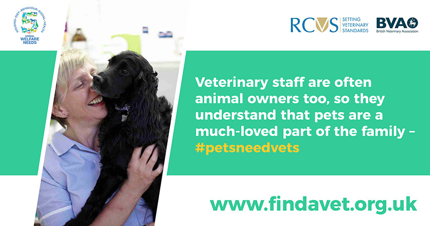 text - Veterinary staff are often animal owners too, so they understand that pets are a much-loved part of the family.