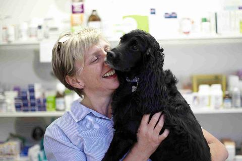 Picture of veterinary surgeon with dog