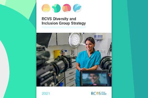 RCVS Diversity & Inclusion Group Strategy front cover